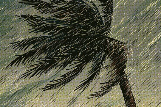 ⚠️ Typhoon Vamco